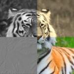 <!--:en-->ziilabs_opencl_image_filters<!--:-->